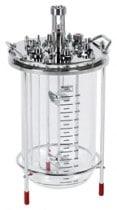 15L glass bioreactor