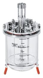 5L glass bioreactor